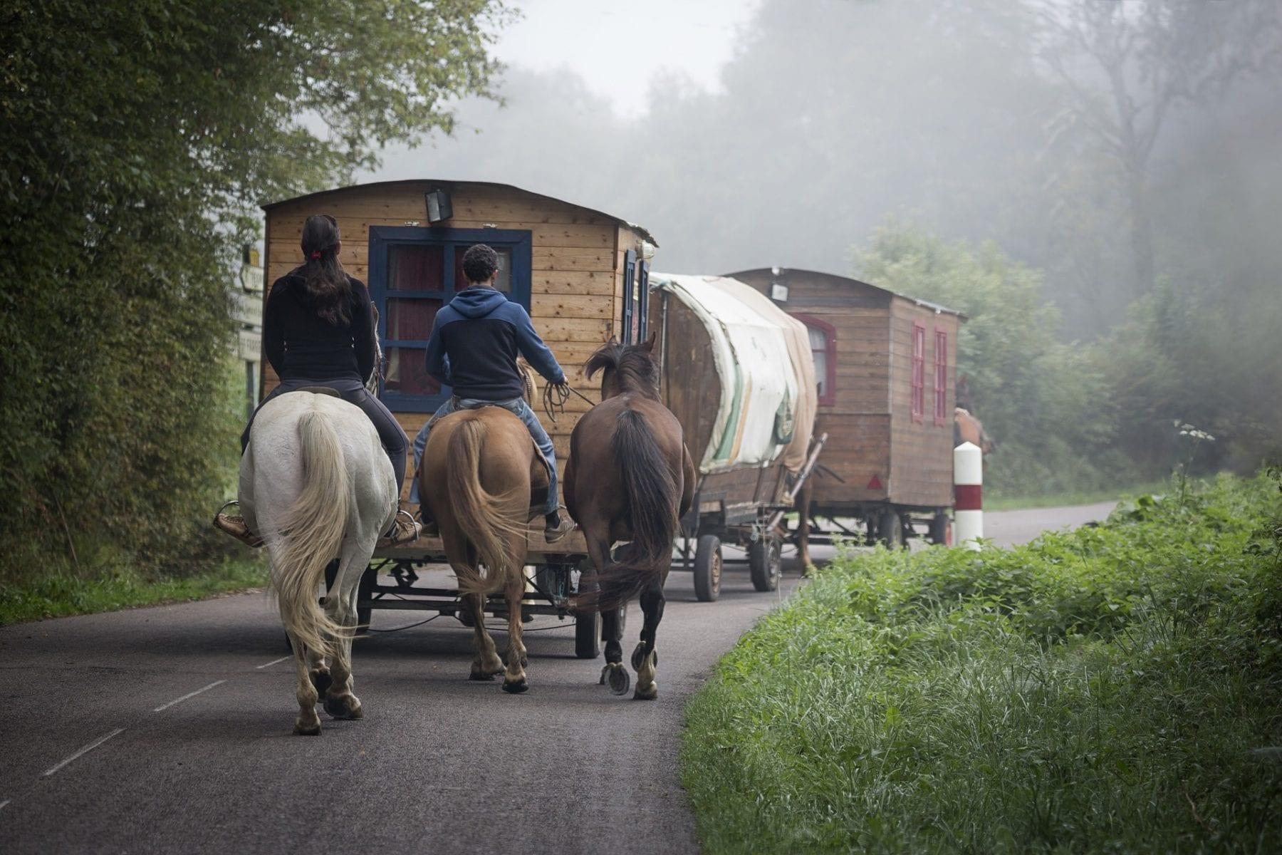 maringotka a koně